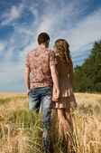 Loving couple holding hands on wheat field — Stock Photo