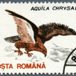 ROMANIA - 1993: shows Golden Eagle (Aquila chrysaetos) — Stock Photo