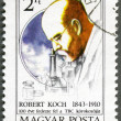 HUNGARY - 1982: shows Robert Koch, TB Bacillus centenary - Stock Photo