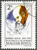 HUNGARY - 1982: shows Robert Koch, TB Bacillus centenary — Stock Photo