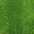 Green grass background — Stock Photo #11348188