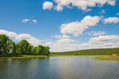 River and summer nature — Stockfoto