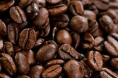 Coffee beans texture — Stock Photo