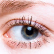 Closeup shot of  eye — Stock Photo