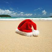 Navidad tropical — Foto de Stock