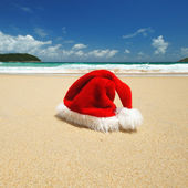 Tropical christmas — Foto Stock