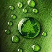 Vattendroppar på blad och recycle logotyp — Stockfoto