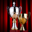 Prize cup against the background — Stock Photo #11075851