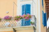 Agradável varanda com flores frescas — Fotografia Stock