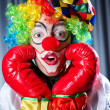 Clown with boxing gloves — Stock Photo #12022815
