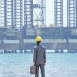 Stock Photo: Oil engineer on sea side beach