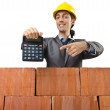 Businessman with bricks on white — Stock Photo #12024028