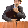 Businessman near brick wall — Stock Photo #12024081