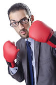 Businessman in boxing concept on white — Stock Photo