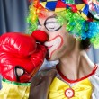 Clown with boxing gloves — Stock Photo #12152539