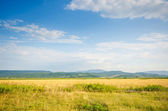Dull countryside landscape in summer evening — Stock Photo