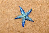 Sea stars on the sand — Stock Photo