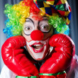Clown with boxing gloves — 图库照片