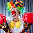 Clown with boxing gloves — Stock Photo #12322643