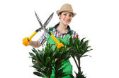 Woman gardener trimming plans on white — Photo