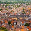 View of the city of Malines (Mechelen) — Stock Photo