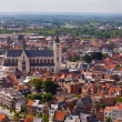 View of the city of Malines (Mechelen) — Photo