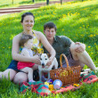 Family on picnic, — Stock Photo