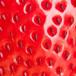 Macro strawberry — Foto de Stock