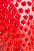Makro truskawka — Zdjęcie stockowe
