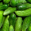 Cucumbers — Stock Photo #12015825