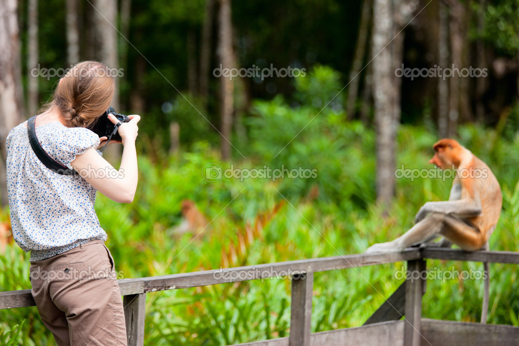 Female photographer and proboscis monkey on Borneo island in Malaysia — Stock Photo #11079330