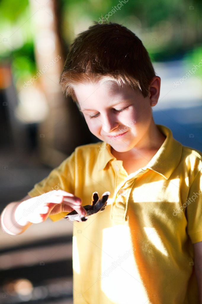 Portrait of cute boy holding baby turtle  Stock Photo #11276526
