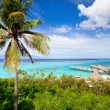 Moorea island landscape — Stock Photo #12208687