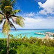 Moorea island landscape - Stock Photo