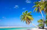 Perfect tropical beach — Stock Photo
