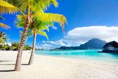 Pláž bora bora — Stock fotografie