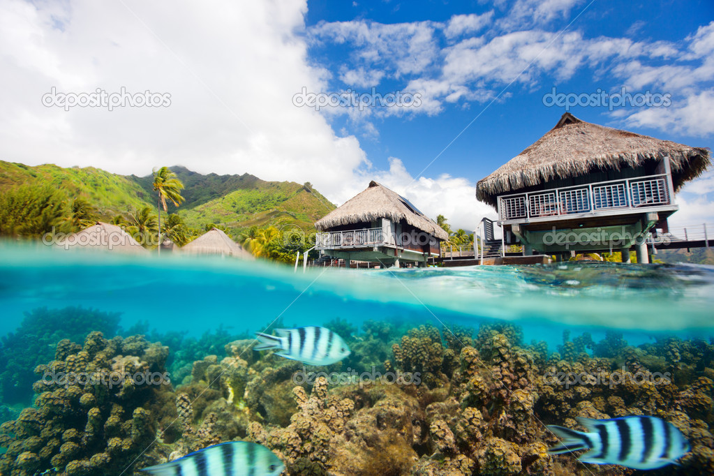 Beautiful above and underwater landscape of Moorea island in French Polynesia — Stock Photo #12394044
