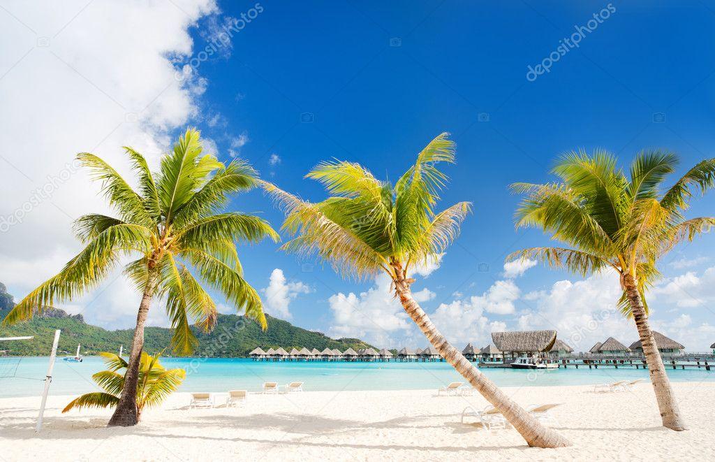 Фотообои Прекрасный пляж на Бора-Бора