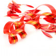 Streamer and petals — Stock Photo #11300156