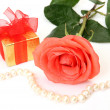 Fine rose and gift — Stockfoto
