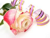 Róża i chorągiew — Zdjęcie stockowe