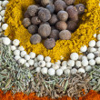 Spice background — Stockfoto #11240600