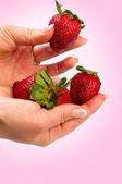 Fresa en manos — Foto de Stock