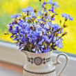 Bouquet of bluets — Stock Photo #11567476
