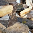 Cutting the wood with ax - Stock Photo — Stok fotoğraf
