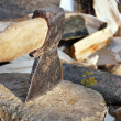Cutting the wood with ax - Stock Photo — Foto de Stock
