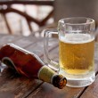 Empty bottle and the glass of beer — Stock Photo #11269509