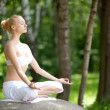 Young girl doing yoga in the park — Stock Photo #11406643