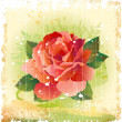 Vintage illustration of red rose — Imagen vectorial