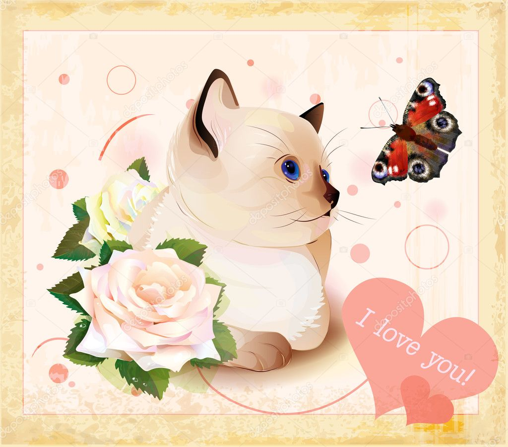 Valentines day greeting card with kitten, butterfly and roses — Stock Vector #11487955